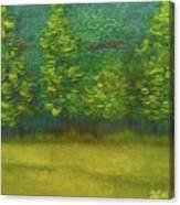 The Lakeside  Canvas Print
