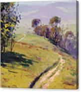 Hilly Landscape Lithgow Canvas Print