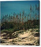 Hilton Head Island Canvas Print