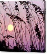 Hilton Head Sunset Canvas Print