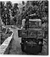 Himalayan Limo Bw Canvas Print