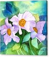 Himalayan Poppies Canvas Print