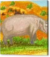 Hippo In The Savanna Canvas Print