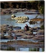Hippo Raft Canvas Print
