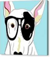 Hipster Bull Terrier Canvas Print