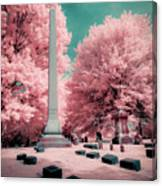 Historic Cemetery In Infrared Canvas Print