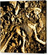 History Unearthed Canvas Print