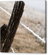 Hoarfrost And Fence Canvas Print