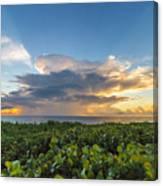 Hobe Sound Beach Sunrise Canvas Print