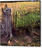Hogeye Grave Site Canvas Print