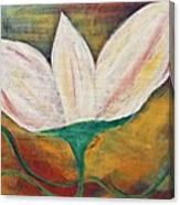 Holiness Canvas Print