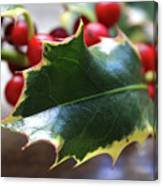 Holly Berries- Photograph By Linda Woods Canvas Print