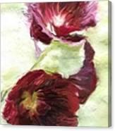 Holly Hock 1d Canvas Print