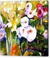 Hollyhock Garden 1 Canvas Print