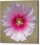 Hollyhock On Linen 2 Canvas Print