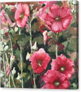 Hollyhocks Along The Fence Canvas Print