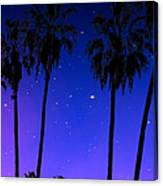 Hollywood Palm Tree Abstract Canvas Print