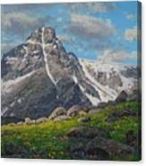 Holy Cross Wilderness Canvas Print