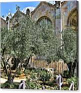 Holy Gardens Canvas Print
