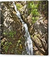 Holy Jim Falls Canvas Print