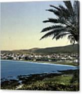 Holyland - Mount Carmel Haifa Canvas Print