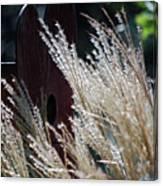 Home Behind The Grass Canvas Print