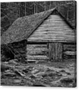 Home In The Woods Bw Canvas Print