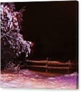 Homer Storm Canvas Print