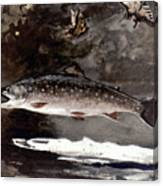 Homer: Trout, 1889 Canvas Print
