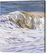 Honey Wave Canvas Print