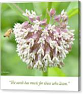 Honeybee And Milkweed Flowers Canvas Print