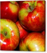 Honeycrisp Apples Canvas Print