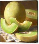 Honeydew Melons Canvas Print
