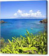 Honolua Bay Canvas Print