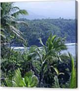 Honomaele Near Mokulehua At Hale O Piilani Heiau Hana Maui Hawaii Canvas Print