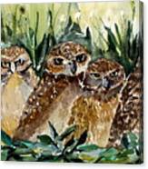 Hoo Is Looking At Me? Canvas Print