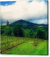Hood River Oregon - Cloud Burst Over The Vineyard Canvas Print