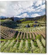 Hood River Pear Orchards On A Cloudy Day Canvas Print
