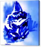 Hooded Scholar Canvas Print