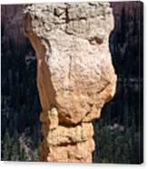 Hoodoo In Bryce Canyon Canvas Print