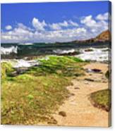 Ho'okipa Beach Maui Canvas Print