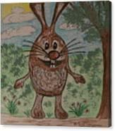 Hopper Doodle Bolak Canvas Print