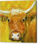 Horned Cow Painting Canvas Print
