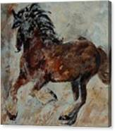 Horse 561 Canvas Print