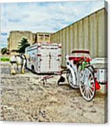 Horse And Buggie Canvas Print