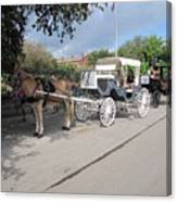 Horse And Buggy Canvas Print