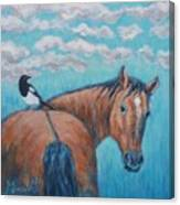 Horse And Magpie Canvas Print