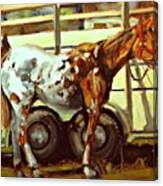 Horse And Trailer Canvas Print