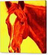 Horse Art Horse Portrait Maduro Deep Yellow And Orange Canvas Print