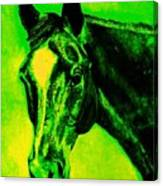 Horse Art Horse Portrait Maduro Green Black And Yellow Canvas Print